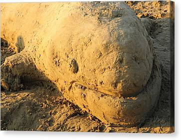 Sand Sculpture Canvas Print by BandC  Photography