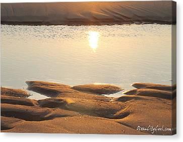 Sand Shine Canvas Print by Robert Banach