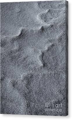 Sand Swirls Canvas Print
