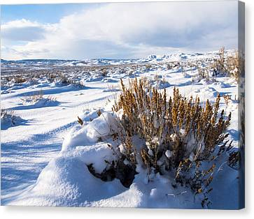 Sand Wash Basin In The Winter Canvas Print