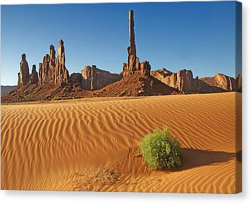 Canvas Print featuring the photograph Sand Waves by Paul Miller