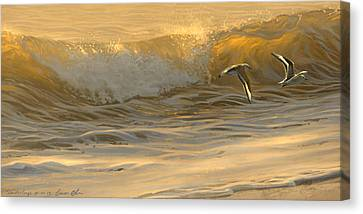 Sanderlings Canvas Print by Aaron Blaise