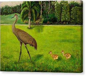 Painted Sandhill Crane With Chicks  Canvas Print