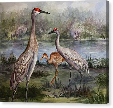 Canvas Print featuring the painting Sandhill Cranes On Alert by Roxanne Tobaison