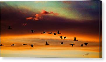 Sandhill Cranes Take The Sunset Flight Canvas Print