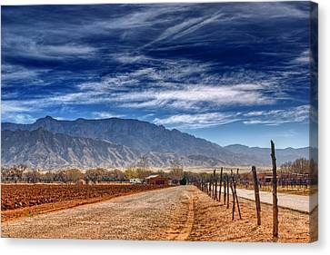Sandias In My Backyard Canvas Print by Nikolyn McDonald