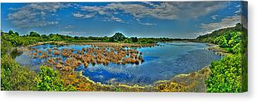 Canvas Print featuring the photograph Sandpiper Pond Panorama by Ed Roberts