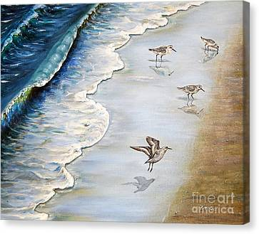 Sandpipers On The Beach Canvas Print by Zina Stromberg