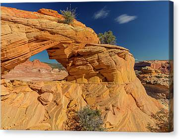 The Plateaus Canvas Print - Sandstone Arch In The Vermillion Cliffs by Chuck Haney