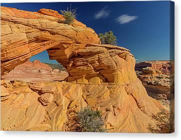 Sandstone Arch In The Vermillion Cliffs Canvas Print by Chuck Haney