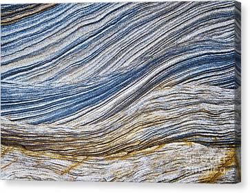 Sandstone Strata Canvas Print by Tim Gainey