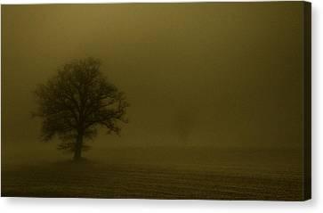 Sandstorm Canvas Print by Chris Fletcher