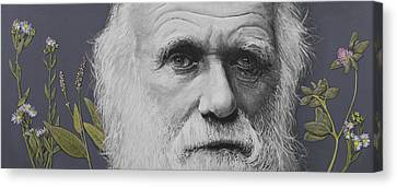 Sandwalk Wood- Charles Darwin.  Canvas Print by Simon Kregar