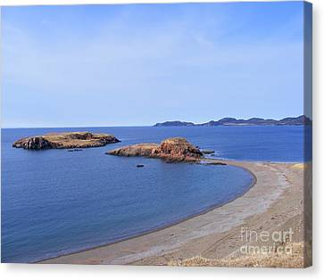 Sandy Beach - Little Island - Coastline - Seascape  Canvas Print by Barbara Griffin