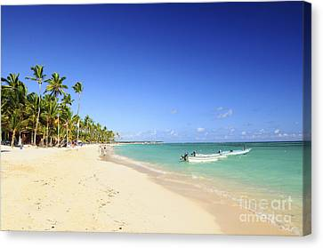 Sandy Beach On Caribbean Resort  Canvas Print by Elena Elisseeva