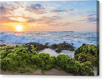 Sandy Beach Sunrise 2 Canvas Print