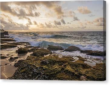 Sandy Beach Sunrise 2 - Oahu Hawaii Canvas Print by Brian Harig