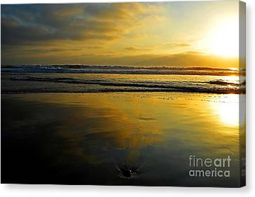 Sandy Reflections Canvas Print
