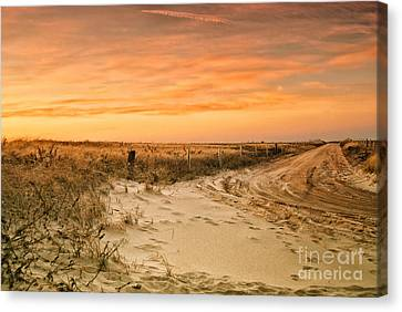 Sandy Road Leading To The Beach Canvas Print by Sabine Jacobs
