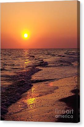 Canvas Print featuring the photograph Sanibel Sunset by D Hackett