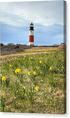 Sankaty Lighthouse Nantucket Canvas Print