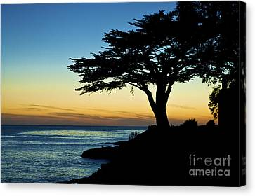 Santa Cruz California 3 Canvas Print