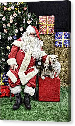Santa Paws  Canvas Print by Helen Akerstrom Photography