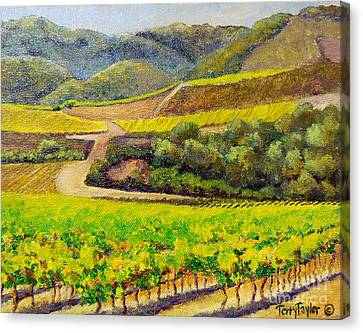 Santa Rita Color Canvas Print by Terry Taylor