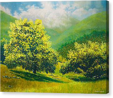 Santa Ynez Hills Canvas Print by Douglas Castleman