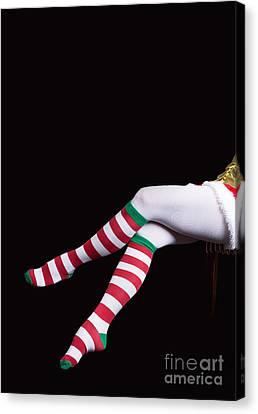 Santas Helper Legs Christmas Card Canvas Print