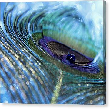 Saphire Blues Canvas Print