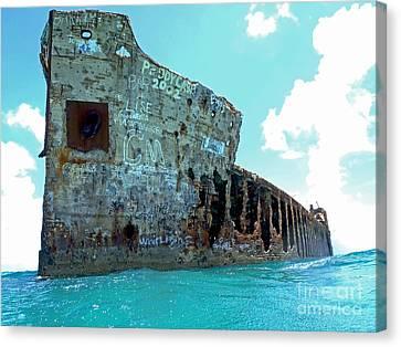 Sapona Ship Wreck Canvas Print by Carey Chen