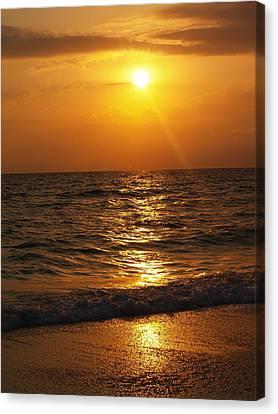 Sarasota Sunset Florida Canvas Print by Athala Carole Bruckner