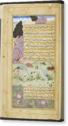 Sarus Crane (sur Gujarati) Canvas Print by British Library