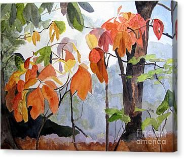 Sassafras Trees On The Ridge Canvas Print