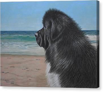 Satchel By The Sea Canvas Print by Debbie Stonebraker