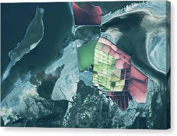 Great Salt Lake Canvas Print - Satellite View Of Salt Fields by Panoramic Images