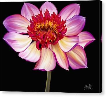 Satin Flames Canvas Print by Laura Bell