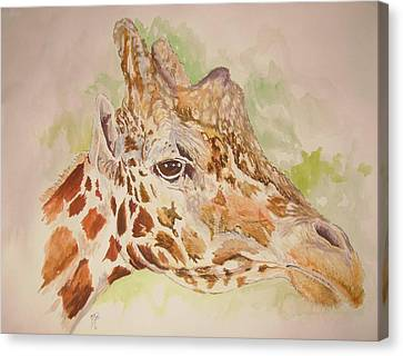 Savanna Giraffe Canvas Print