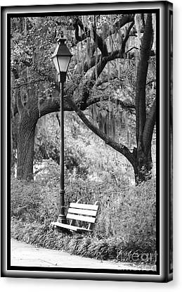 Savannah Afternoon - Black And White Canvas Print by Carol Groenen