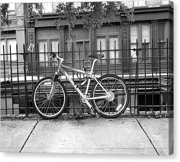 Savannah Bike  Canvas Print by Janet Felts