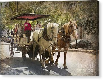 Savannah Carriage Ride Canvas Print by Carrie Cranwill