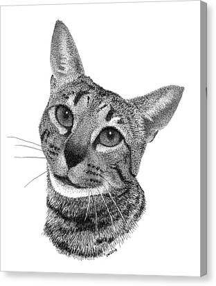 Savannah Cat Canvas Print