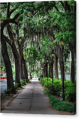 Savannah - Forsyth Park 002 Canvas Print