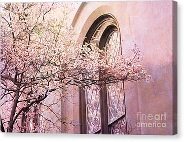 Savannah Georgia Church Window With Pink Floral Trees Nature  Canvas Print by Kathy Fornal
