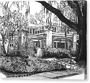 Canvas Print featuring the drawing Savannah Living by Rachel Hames