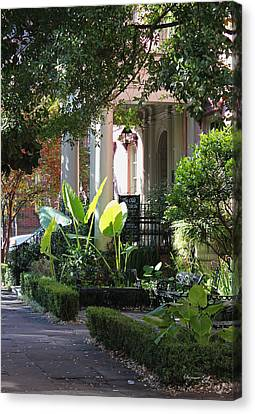 Savannah Scenic Canvas Print by Suzanne Gaff