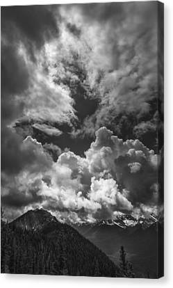 Save The Light Canvas Print