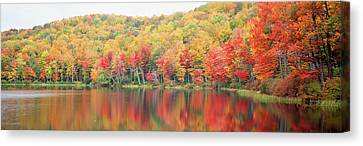 Savoy Mountain State Forest Canvas Print by Panoramic Images