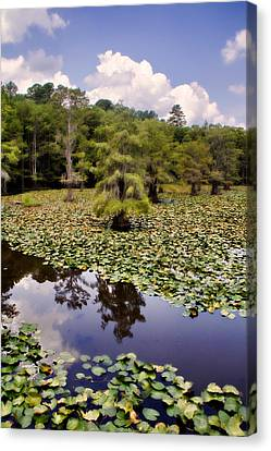 Canvas Print featuring the photograph Saw Mill In July by Lana Trussell
